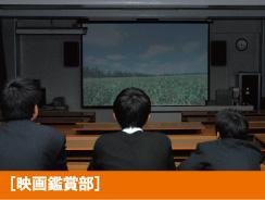 映画鑑賞部