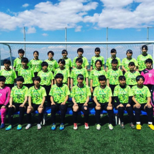 高校 女子 サッカー インターハイ 2019